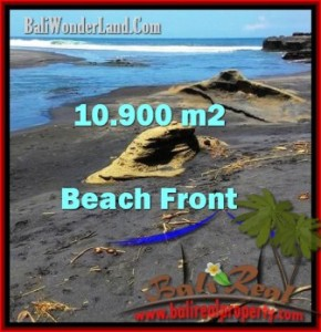 FOR SALE Affordable PROPERTY LAND IN Tabanan Selemadeg BALI TJTB199