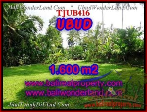 Magnificent PROPERTY LAND FOR SALE IN UBUD TJUB416
