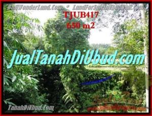 Beautiful 650 m2 LAND FOR SALE IN UBUD BALI TJUB417