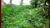 Exotic PROPERTY LAND IN UBUD FOR SALE TJUB481
