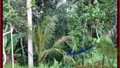 Exotic PROPERTY UBUD LAND FOR SALE TJUB484