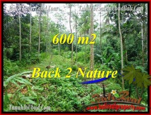 Affordable 600 m2 LAND SALE IN UBUD TJUB493