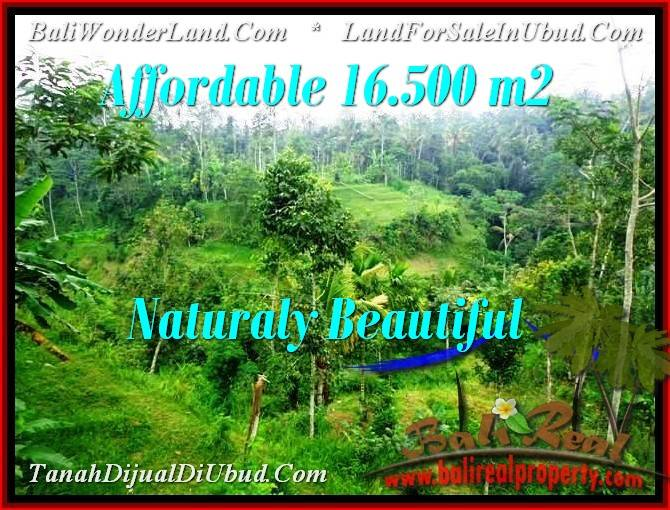 FOR SALE Exotic 16,500 m2 LAND IN UBUD TJUB494