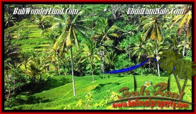Beautiful 2,500 m2 LAND IN UBUD BALI FOR SALE TJUB496