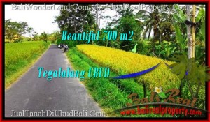 Affordable PROPERTY UBUD BALI 700 m2 LAND FOR SALE TJUB497