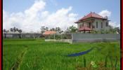 FOR SALE Affordable PROPERTY LAND IN Sentral Ubud BALI TJUB445
