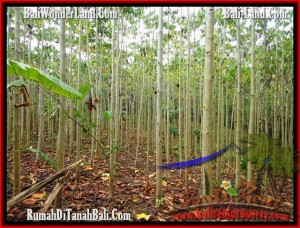 Magnificent PROPERTY LAND IN TABANAN FOR SALE TJTB159