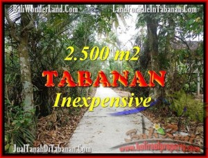 FOR SALE Beautiful LAND IN Tabanan Selemadeg BALI TJTB160