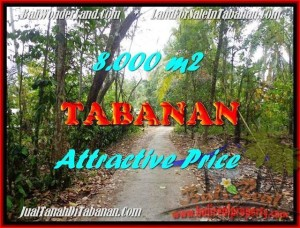 FOR SALE Beautiful LAND IN Tabanan Selemadeg BALI TJTB161