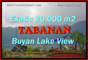 Magnificent LAND SALE IN Pancasari BALI TJTB163