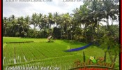 Exotic LAND IN Sentral Ubud BALI FOR SALE TJUB448