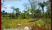 Beautiful LAND SALE IN Sentral Ubud BALI TJUB450