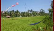 Exotic LAND IN Sentral Ubud BALI FOR SALE TJUB447