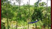 Beautiful PROPERTY LAND SALE IN Ubud Tegalalang BALI TJUB451