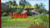 Affordable PROPERTY LAND FOR SALE IN Ubud Pejeng BALI TJUB452