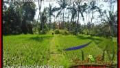 FOR SALE 600 m2 LAND IN Ubud Pejeng BALI TJUB452