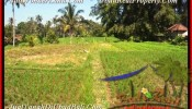 Exotic 600 m2 LAND FOR SALE IN UBUD TJUB452