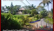 Exotic PROPERTY LAND IN Ubud Pejeng BALI FOR SALE TJUB452