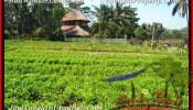 Magnificent PROPERTY Ubud Pejeng BALI LAND FOR SALE TJUB452