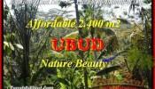 FOR SALE Beautiful LAND IN Ubud Pejeng TJUB454