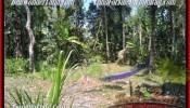 Beautiful PROPERTY LAND SALE IN Ubud Pejeng BALI TJUB454