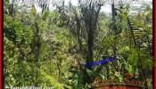 Magnificent PROPERTY Ubud Pejeng BALI LAND FOR SALE TJUB454