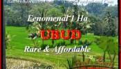 FOR SALE Beautiful LAND IN Ubud Pejeng TJUB456