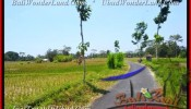 FOR SALE 10.000 m2 LAND IN Ubud Pejeng BALI TJUB456