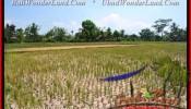 Affordable PROPERTY LAND FOR SALE IN Ubud Pejeng BALI TJUB456