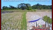 Exotic PROPERTY LAND IN Ubud Pejeng BALI FOR SALE TJUB456