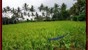 FOR SALE Beautiful PROPERTY LAND IN UBUD TJUB485