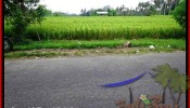 Affordable 2,000 m2 LAND IN UBUD BALI FOR SALE TJUB485