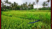 Magnificent 2,000 m2 LAND SALE IN UBUD BALI TJUB485