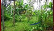 Magnificent PROPERTY Ubud Payangan 4,800 m2 LAND FOR SALE TJUB486