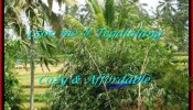 Exotic PROPERTY 1,500 m2 LAND IN Ubud Tegalalang FOR SALE TJUB489