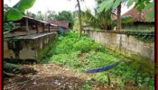 Magnificent PROPERTY Ubud Tegalalang 1,500 m2 LAND FOR SALE TJUB489