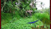 Affordable PROPERTY 2,000 m2 LAND FOR SALE IN Ubud Tegalalang TJUB490