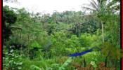 FOR SALE Beautiful 2,000 m2 LAND IN UBUD BALI TJUB490