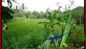 Exotic UBUD BALI 2,000 m2 LAND FOR SALE TJUB490