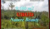 Affordable PROPERTY 9,500 m2 LAND SALE IN UBUD BALI TJUB430