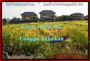 FOR SALE Exotic PROPERTY LAND IN Canggu Batu Bolong  TJCG178