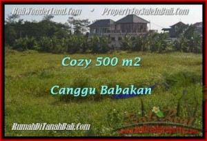FOR SALE Exotic PROPERTY LAND IN Canggu Batu Bolong  TJCG179