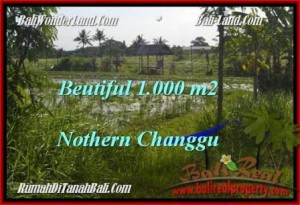 Exotic PROPERTY LAND IN Canggu Batu Bolong  BALI FOR SALE TJCG180