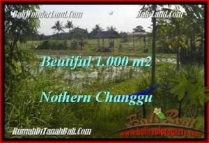 Exotic PROPERTY LAND IN Canggu Batu Bolong  BALI FOR SALE TJCG180
