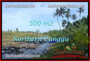 Exotic 500 m2 LAND FOR SALE IN CANGGU TJCG181