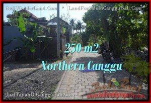 FOR SALE Exotic 250 m2 LAND IN Canggu Pererenan BALI TJCG182