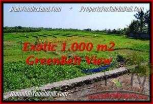 Exotic PROPERTY CANGGU 1,000 m2 LAND FOR SALE TJCG184
