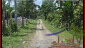Magnificent PROPERTY 11,400 m2 LAND FOR SALE IN Ubud Payangan TJUB431