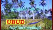 Magnificent 500 m2 LAND IN UBUD BALI FOR SALE TJUB433