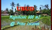 Affordable PROPERTY UBUD BALI 300 m2 LAND FOR SALE TJUB436
